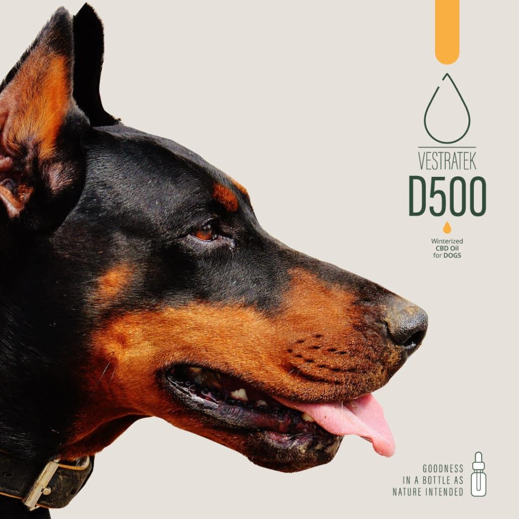 Prirodno CBD ulje od konoplje za pse